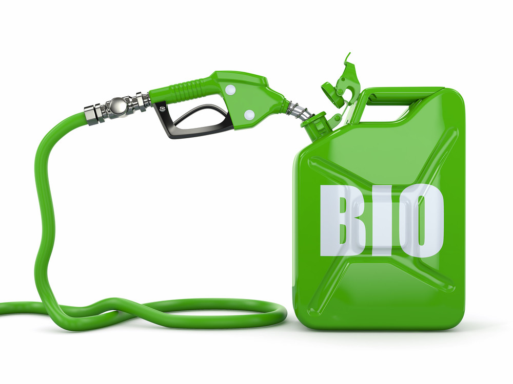 bio fuels are solutions to fuels alternatives