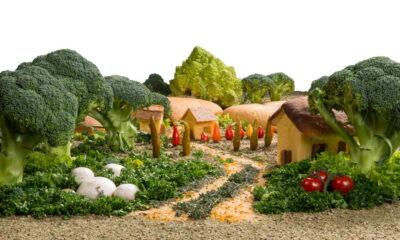 eco-friendly vegetable garden