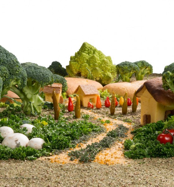 eco-friendly vegetable garden
