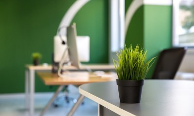 green workspace