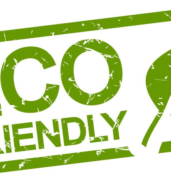 eco-friendly food for good health