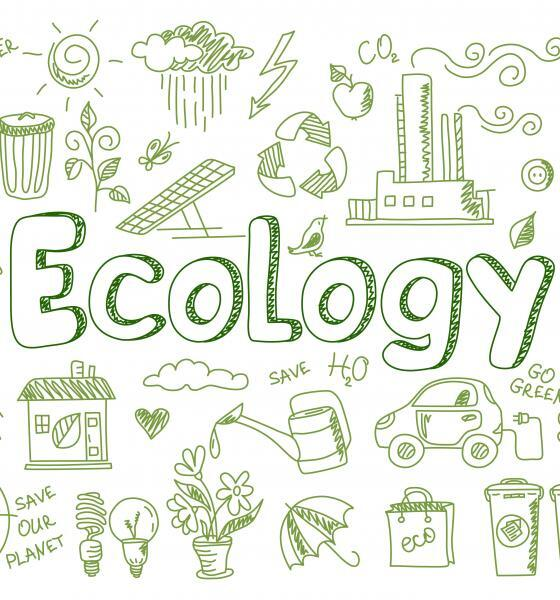 ecologists study university