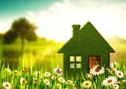 ecofriendly home renovations