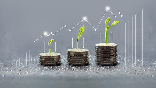 eco-investing strategy