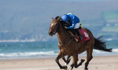 ethical horse racing