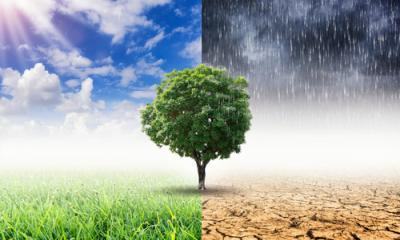 climate change and life insurance