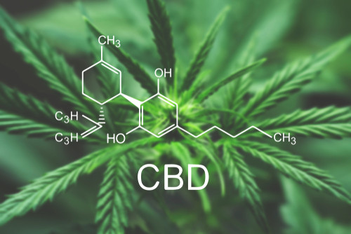 Here Are The Tremendous Health Benefits Of Sustainable CBD