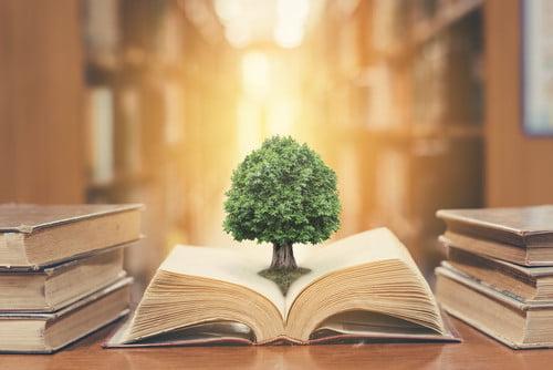 environmental legal cases