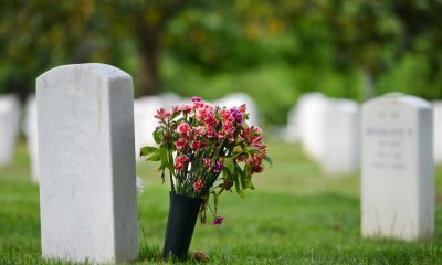 Green funeral services