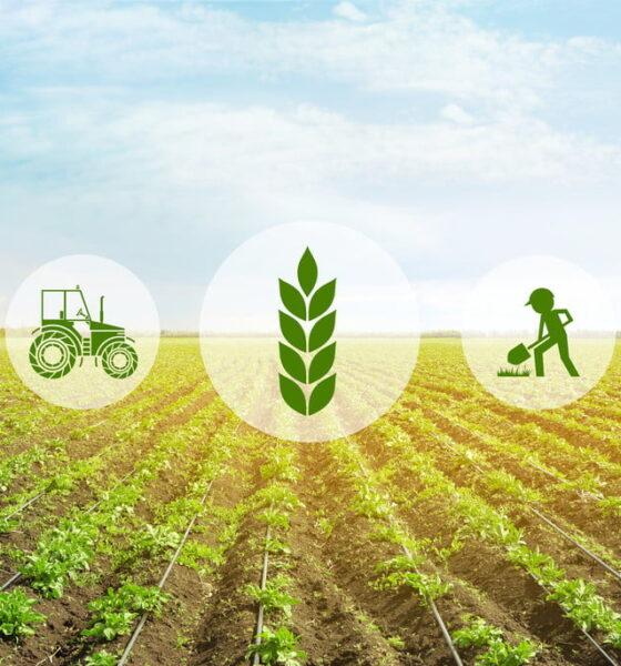 Soil management practices