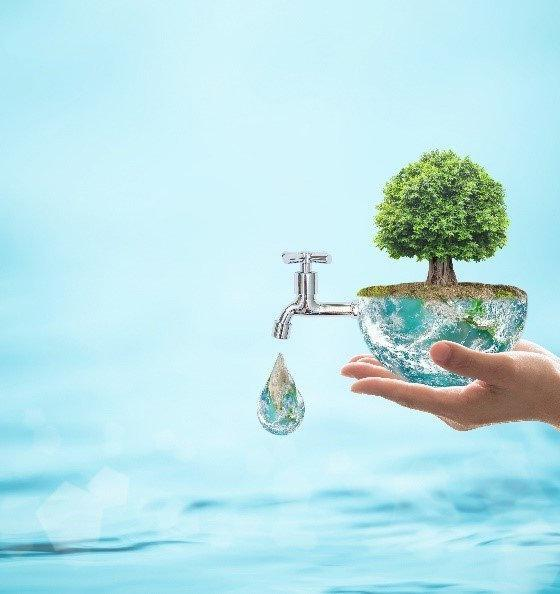 conserve water at home