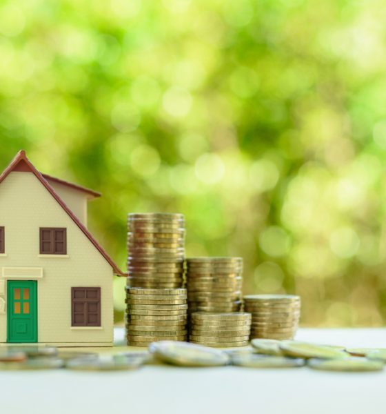 green home owners looking for loans