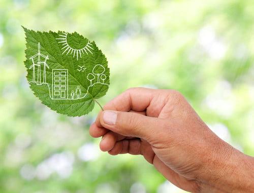 green living resistance