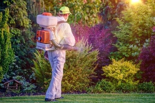 how to manage pests