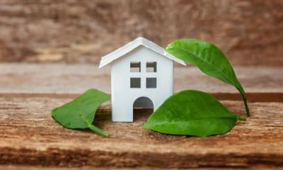 steps towards an eco-friendly home