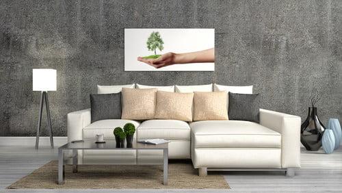 eco-friendly modern home