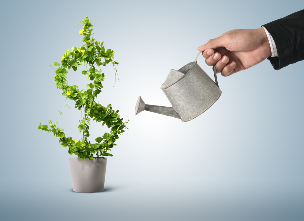 green profit sustainable