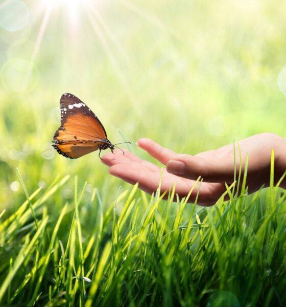 eco-friendly health