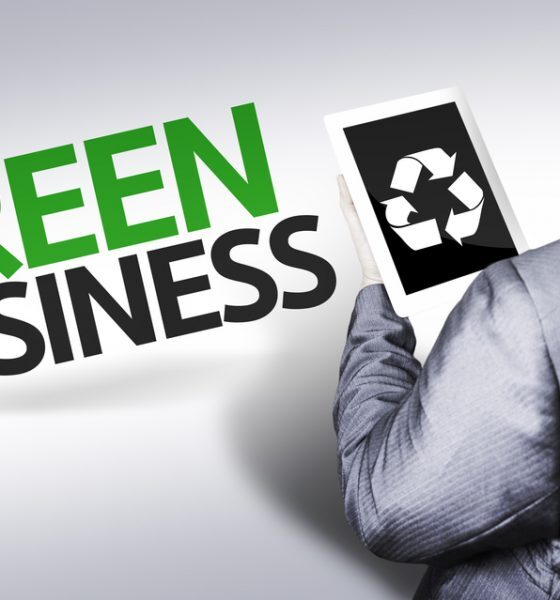 Green Entrepreneurs / green business