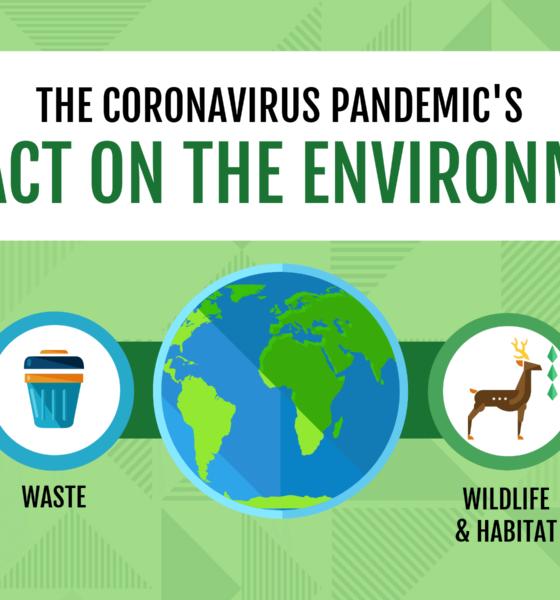Coronavirus Pandemic Impact on Environment