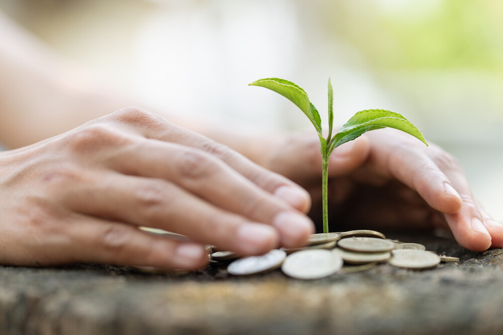 eco-friendly finance guide
