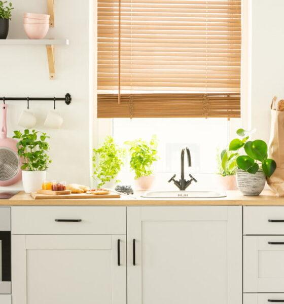 slash your kitchens carbon footprint