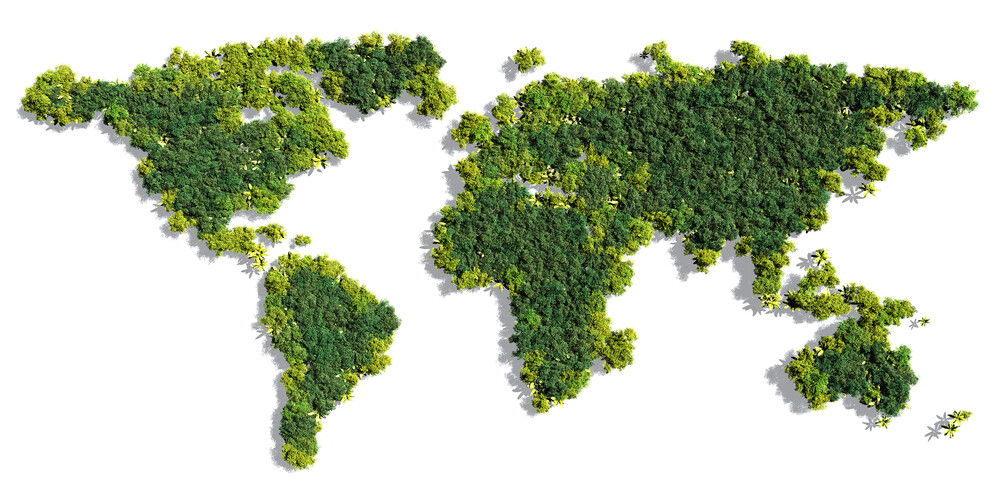 environmental mapping concept