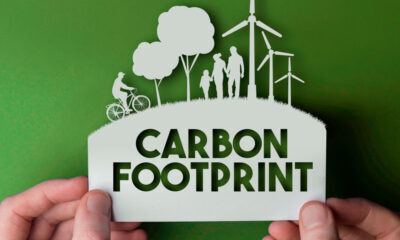 lower your carbon footprint and fight climate change