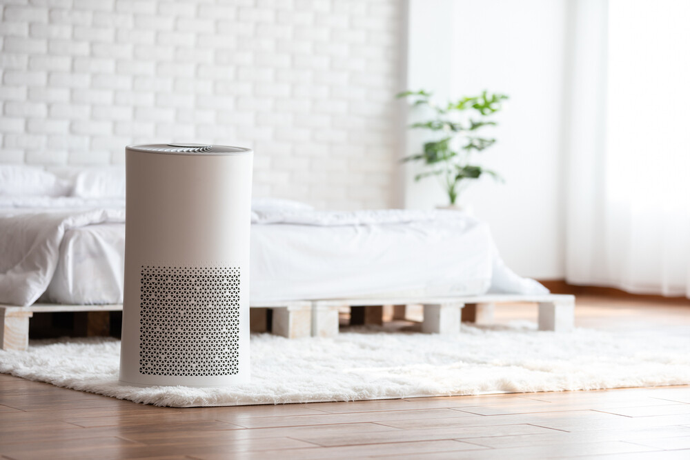indoor air quality the eco-friendly way