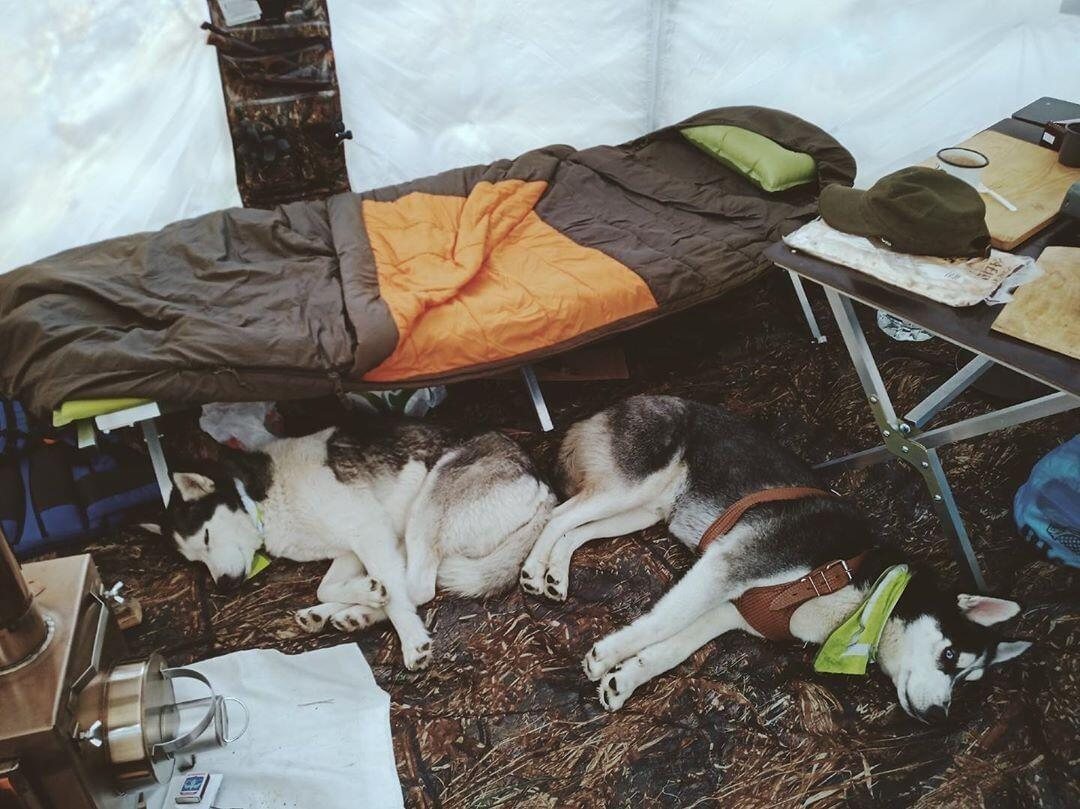 C:\Users\Yulia\Desktop\картинки\Hot-tent\January 2021\2. Winter Camping for Beginners Everything You Need to Know\2.jpg