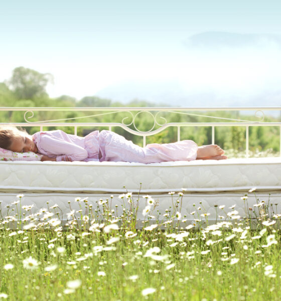 environmental benefits of organic mattress