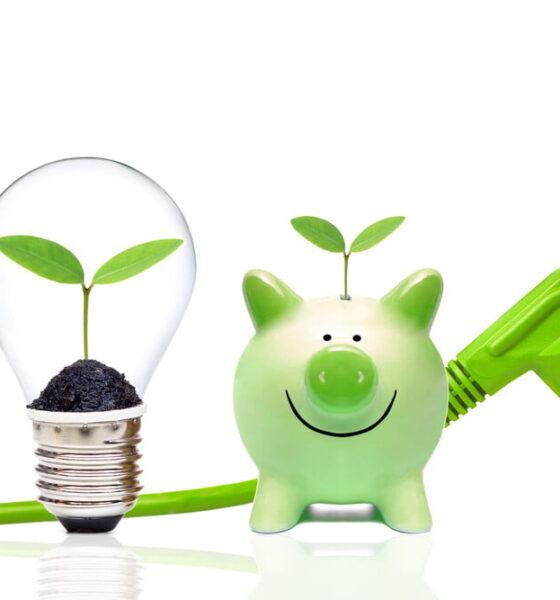 sustainable bank account