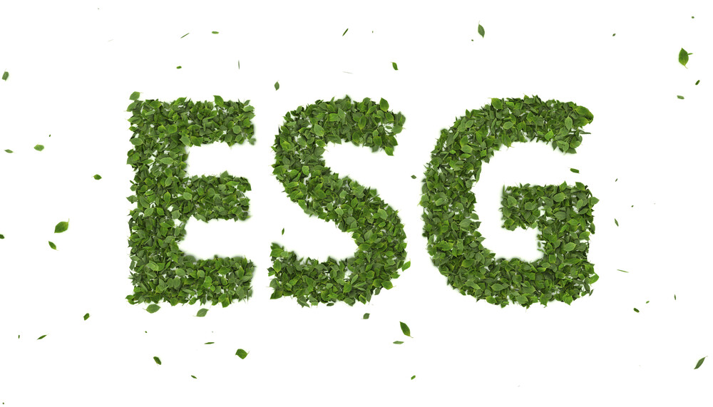 Importance of ESG