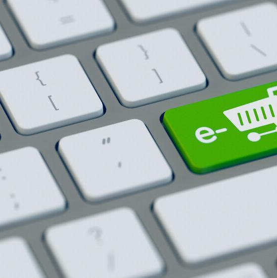 eco-friendly ecommerce business