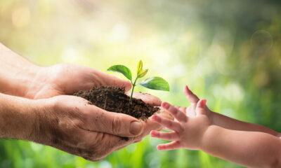 long-term sustainability
