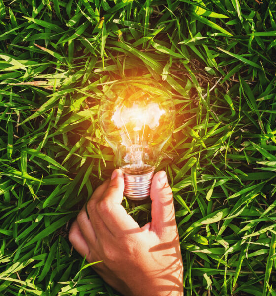green energy market in 2022