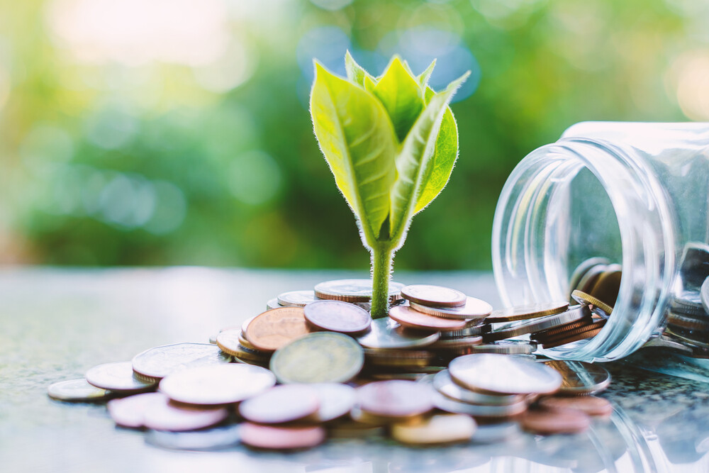 fate of pensions after death for eco-friendly startups