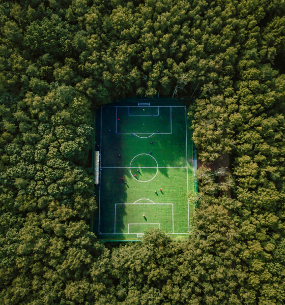 environment and sports industry