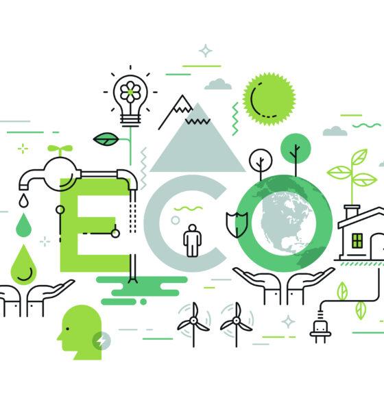 eco-friendly entrepreneurs
