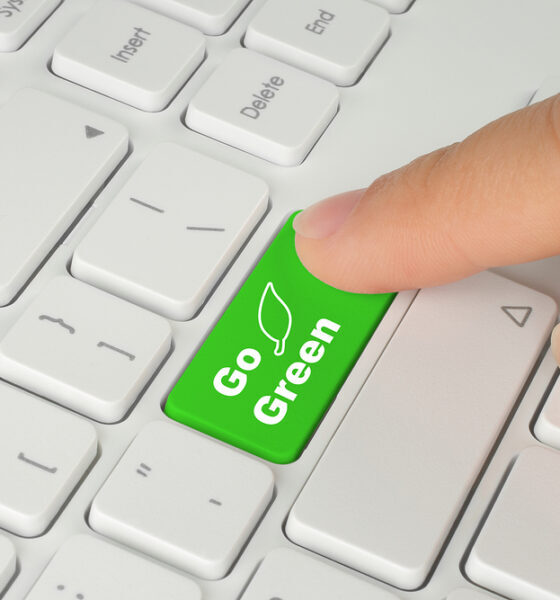 eco-friendly ecommerce