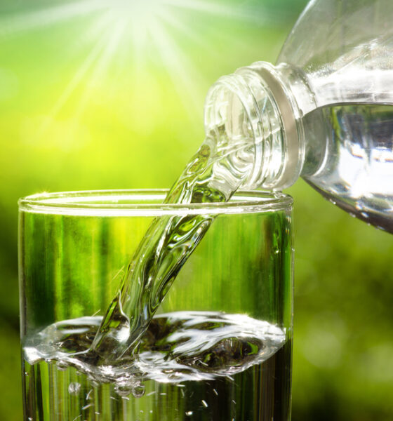 importance of water in eco-friendly diets