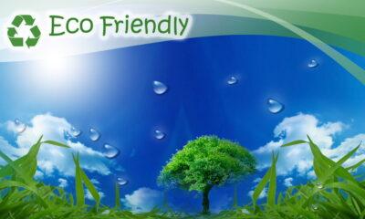 eco-friendly farms