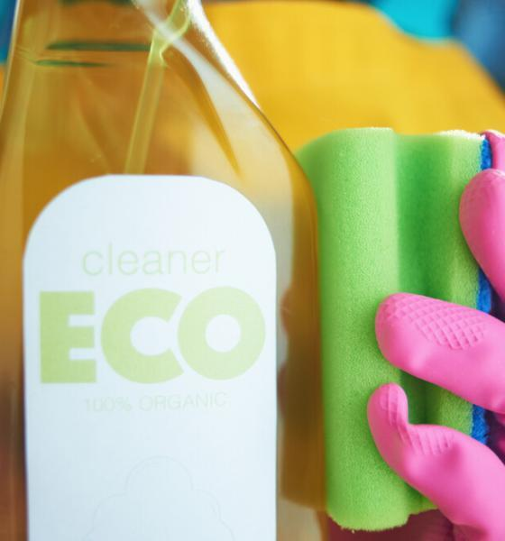 eco-friendly cleaning tips