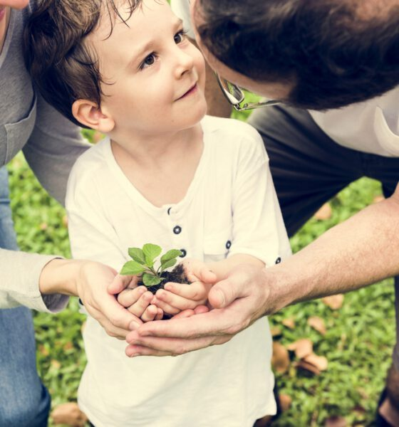 eco-friendly growth plan