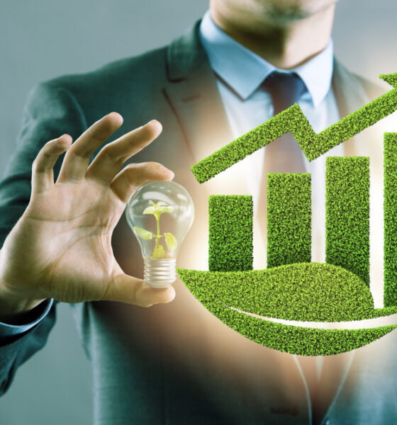 investing in clean energy stocks