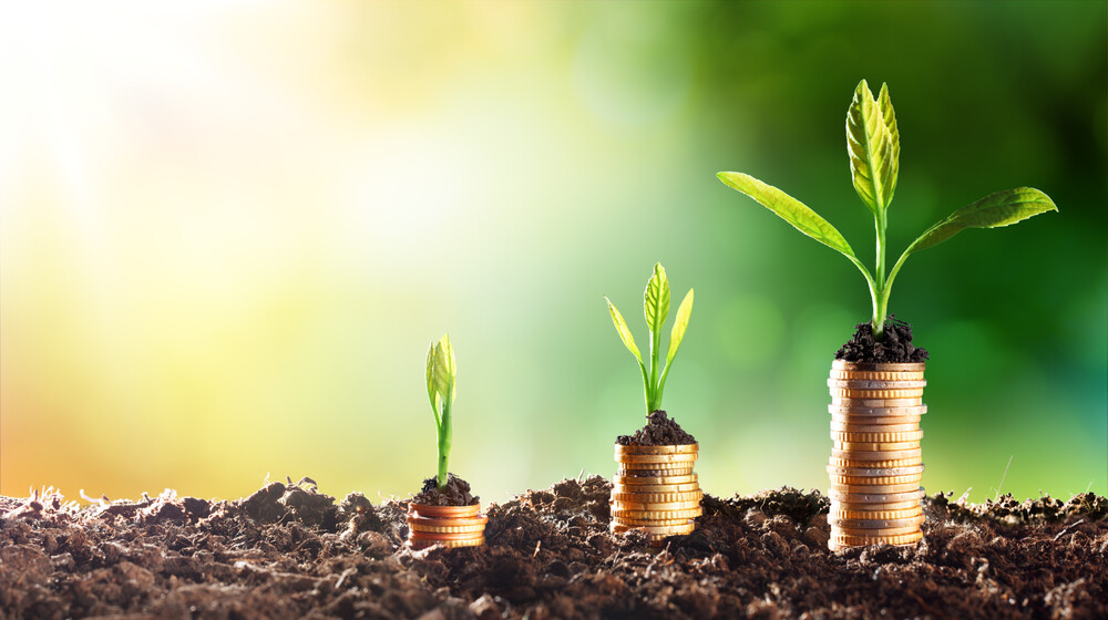 green business financing options