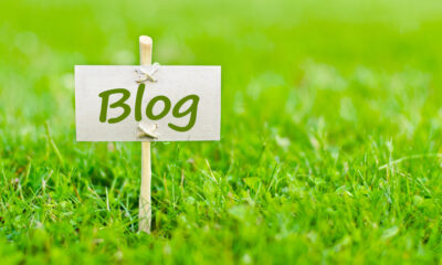 green marketing with blogging